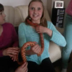 Crazy Creatures North East - Children Having Fun with Corn Snake