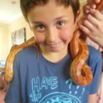 Crazy Creatures North East - Having Fun with a Corn Snake around the neck