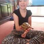Crazy Creatures North East - Having Fun With Tortoise